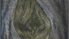 Highwarp Tapestry - Scar Tree