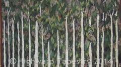 Highwarp Tapestry - Eucalyptus Pupuana